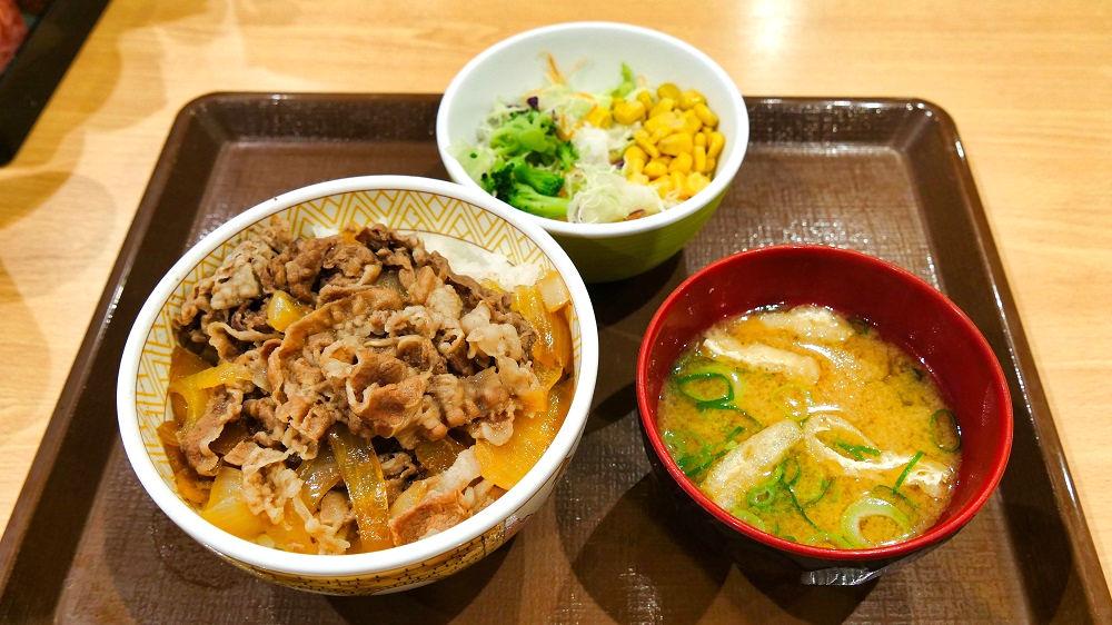 すき家の牛丼(並盛)サラダセット