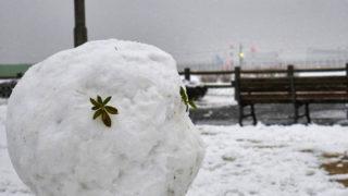 さくらの丘公園も大雪