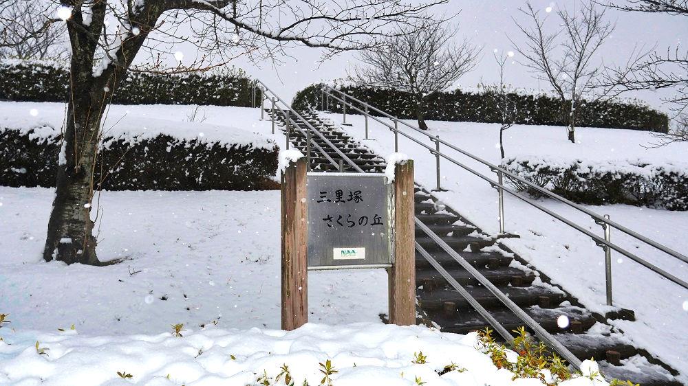 三里塚さくらの丘公園