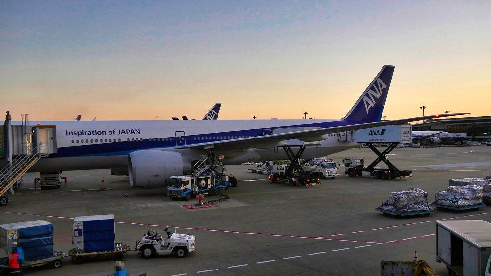 成田空港に駐機するANA便
