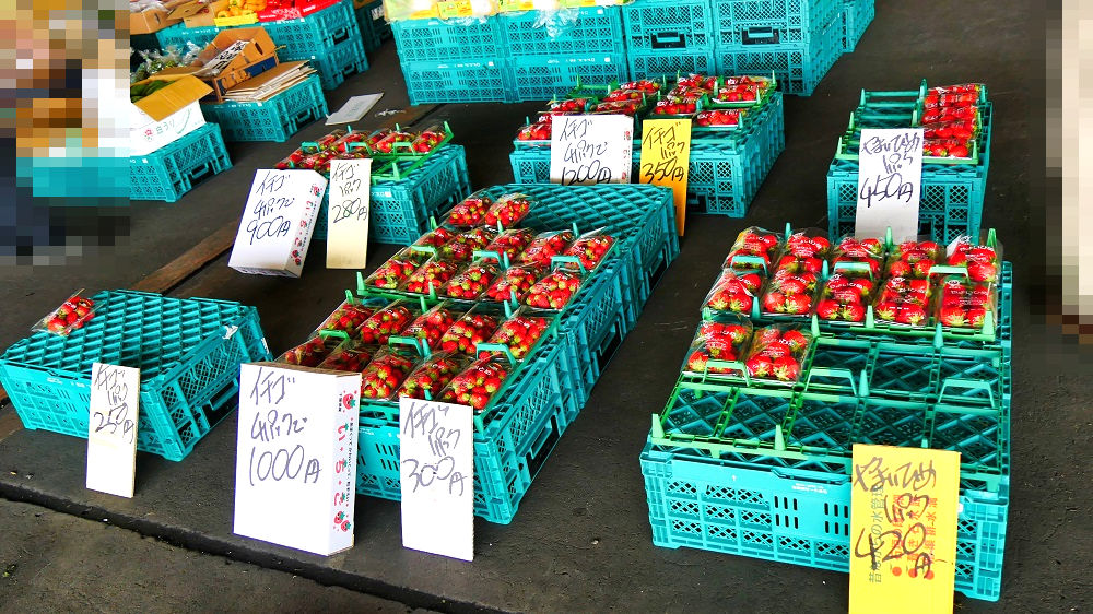 成田市場の青果棟では果物も販売