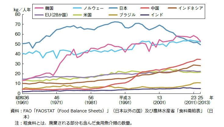 世界の水産物消費