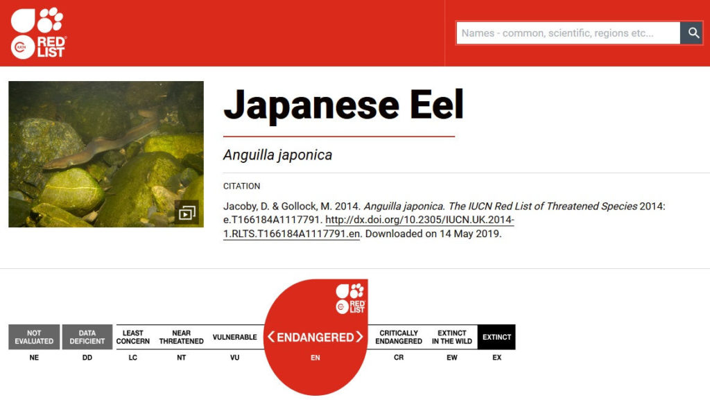 IUCN RED LIST Japanese Eel