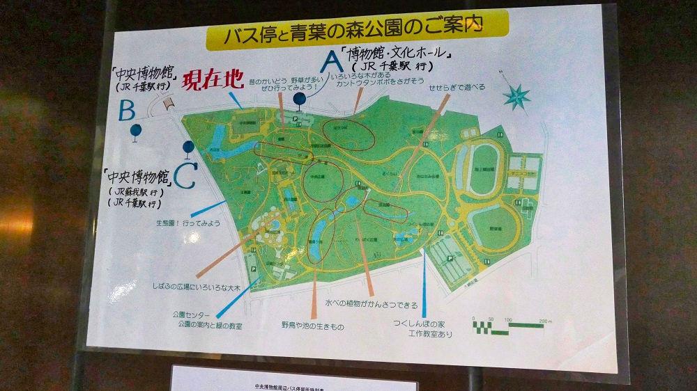 千葉県立中央博物館への鉄道・バスでの行き方