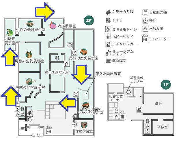 千葉県立中央博物館の順路