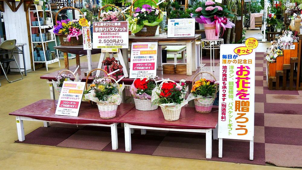 ジョイフル本田富里店(ガーデンセンター)