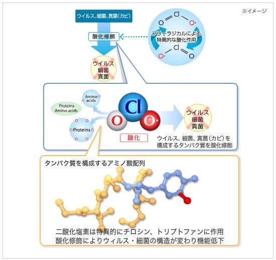 二酸化塩素の除菌効果メカニズム