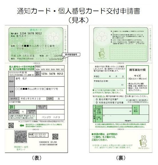 マイナンバー通知カードのサンプル