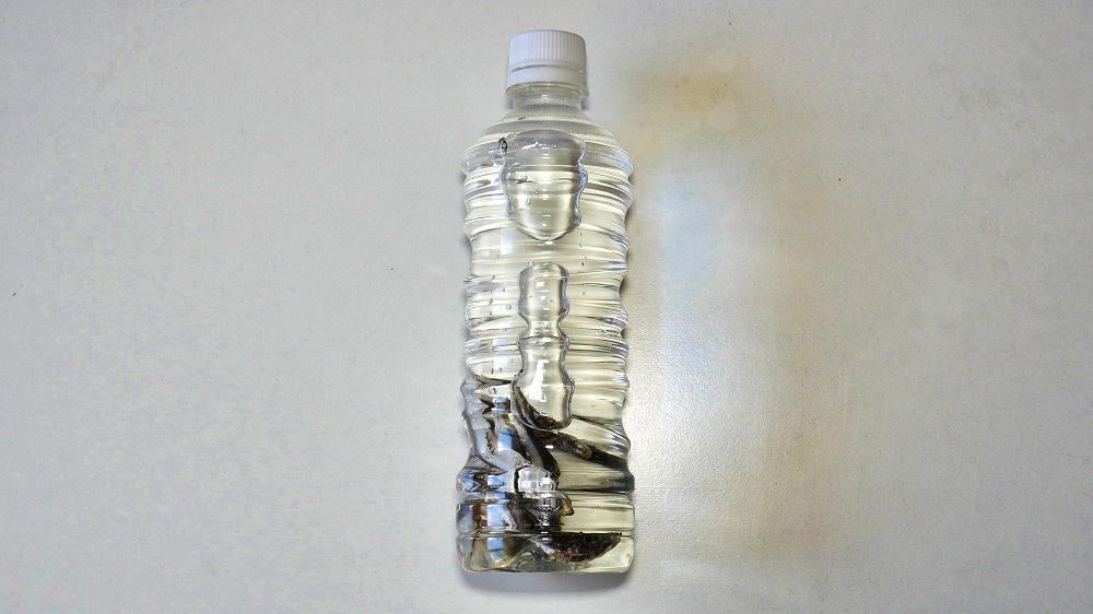 【実践編②】ペットボトルに水を満たす