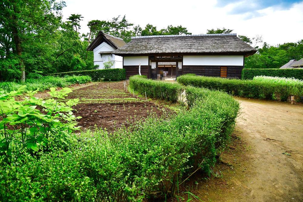 『房総のむら』の農村エリア